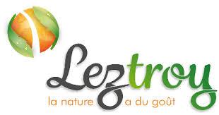 Leztroy logo.jpg