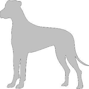 Silhouette chien.jpg