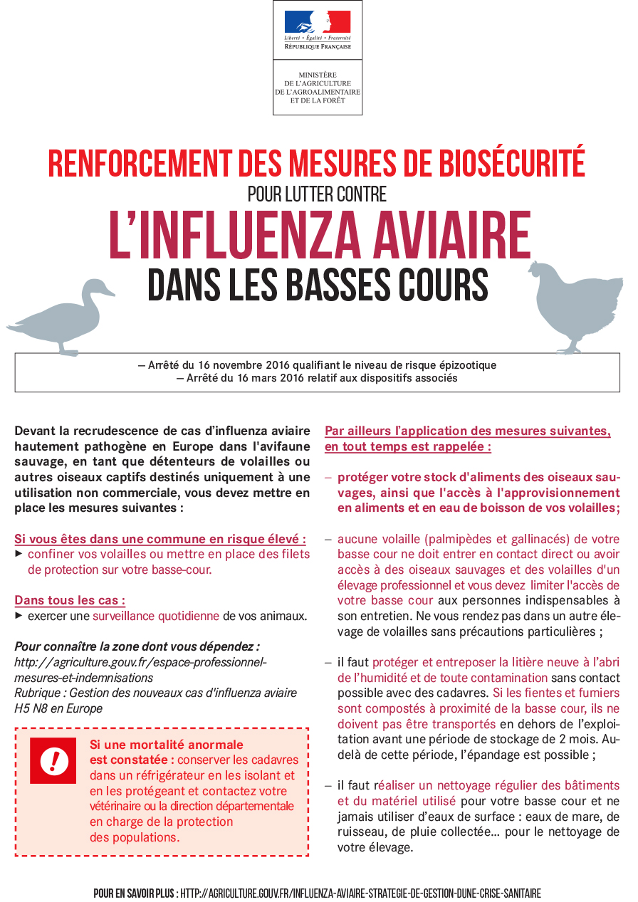 affiche-basses-cours.jpg