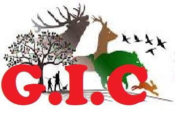 logo-gic.jpg