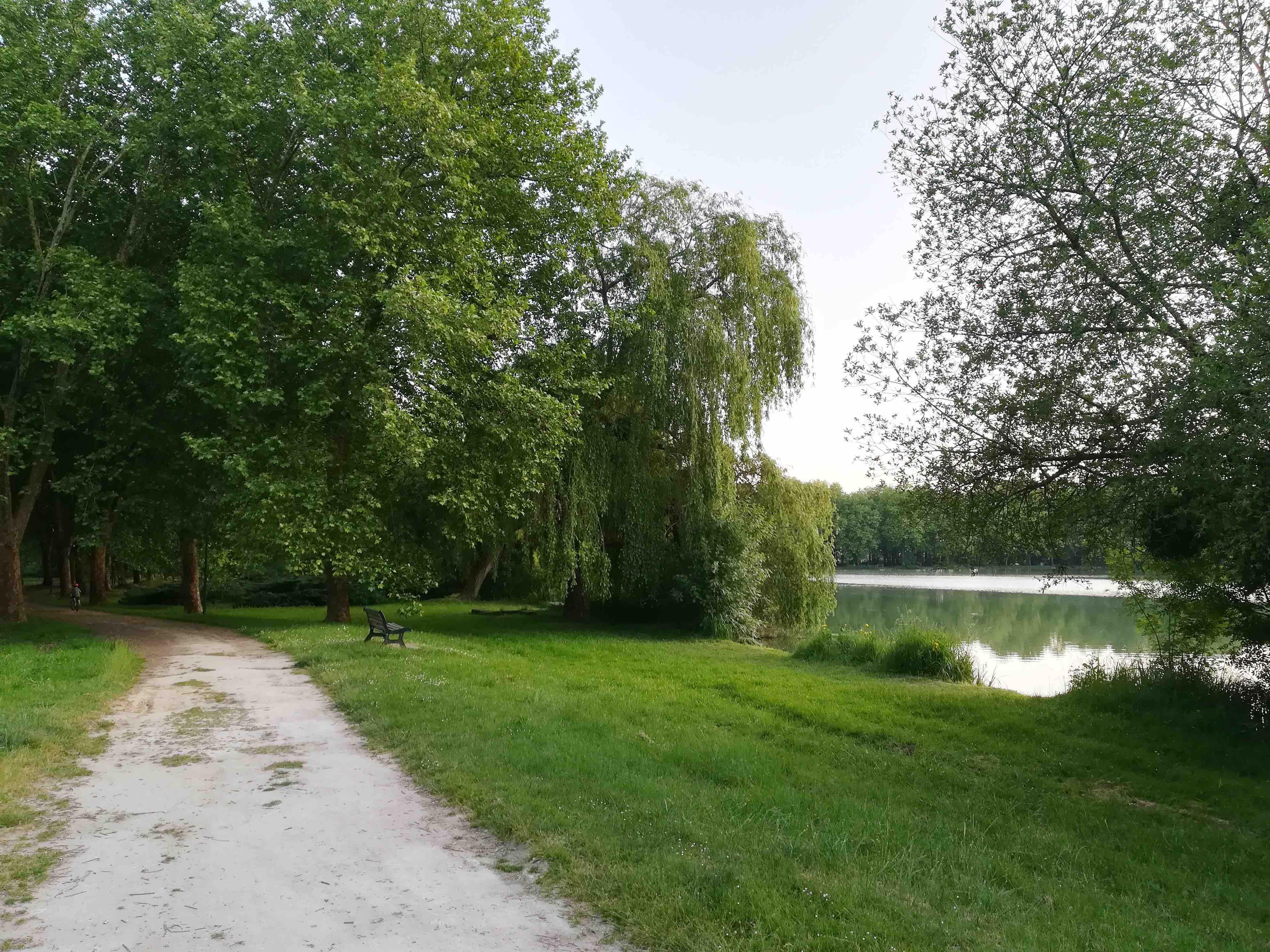 camping lac.jpg