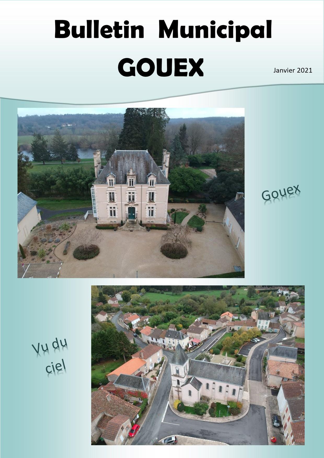 Couverture GOUEX 2020.jpg