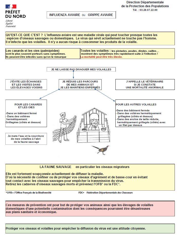 Grippe aviaire image réglementation.JPG