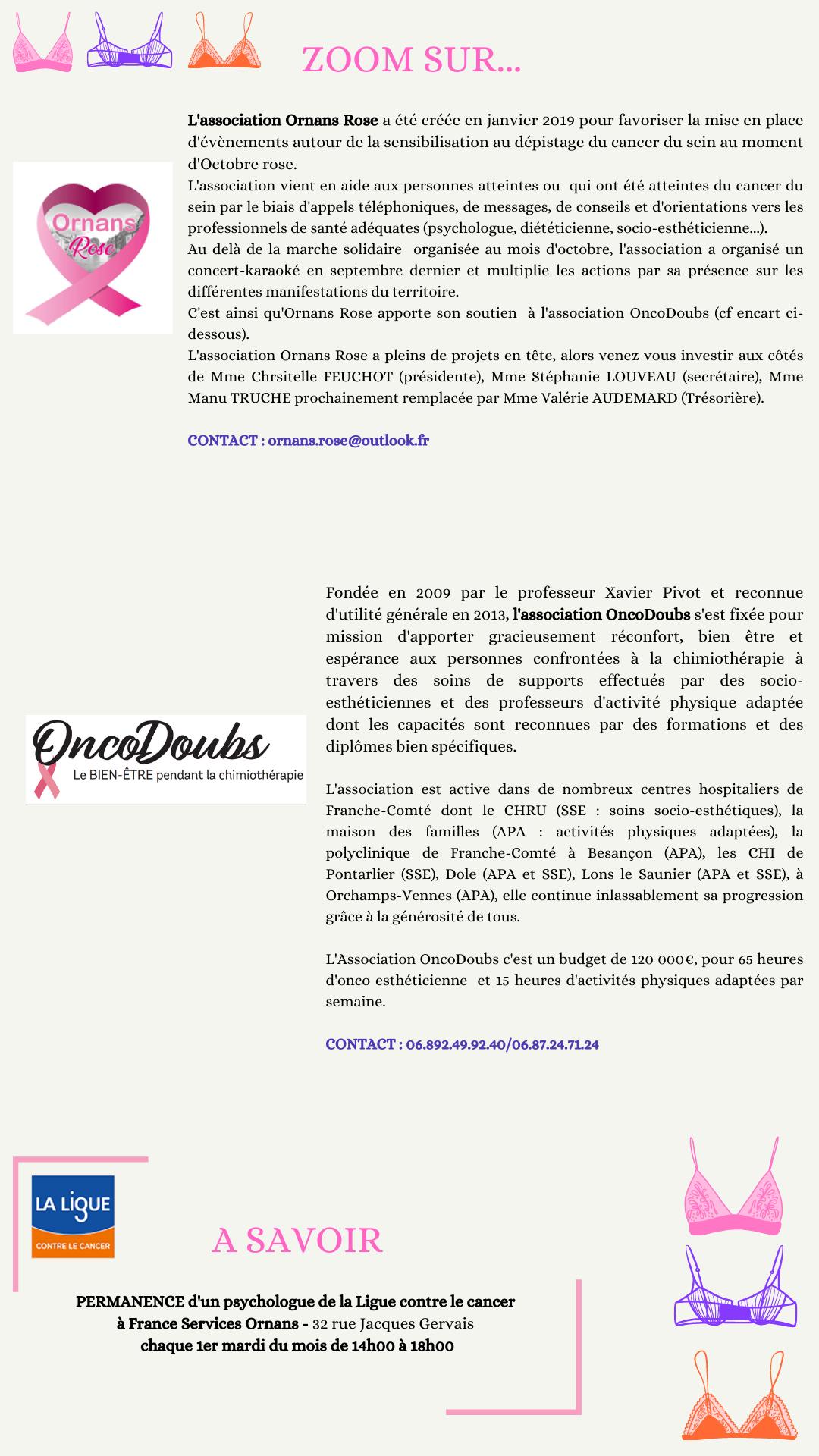 Orange et Violet Soutien-gorge Cancer du Sein Sensibilisation  Rose Octobre Instagram Story _1_.png