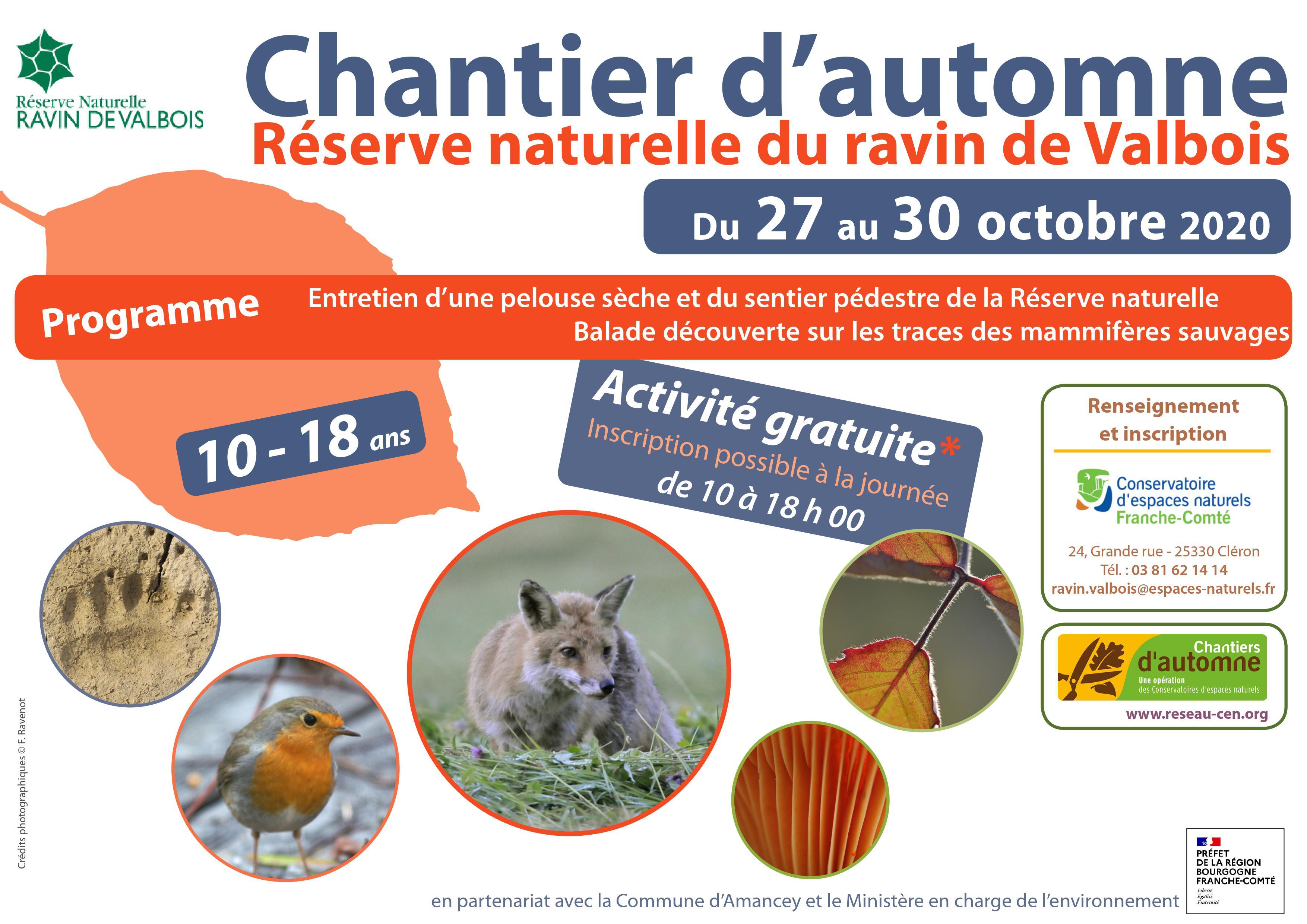 Chantier d_automne 2020.jpg