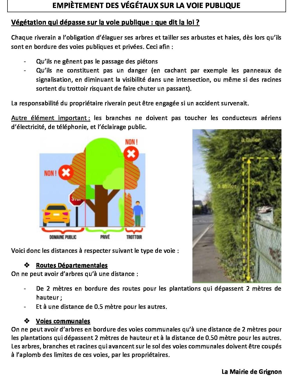 EMPIÈTEMENT-DES-VÉGÉTAUX-SUR-LA-VOIE-PUBLIQUE2.jpeg