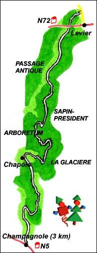 Route des Sapins 3.jpg