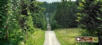 Route des Sapins.jpg