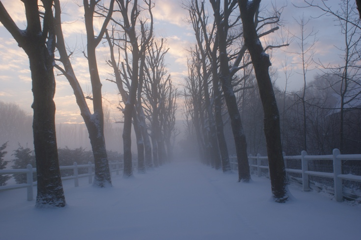 Verlinghem hiver1.jpg