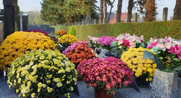 Cimetière fleurs.jpg
