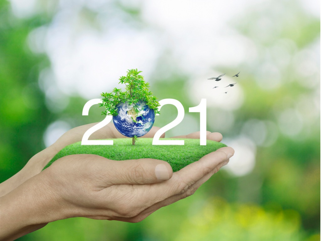 happy-new-year-2021-ecological-cover-save-the-earth-concept-elements-picture-id1286271404 _1_.jpg