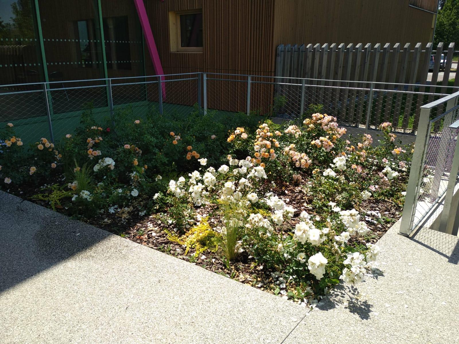 fleurissement pôle _5_.jpg