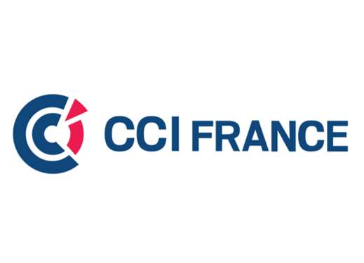logo - CCI France.png