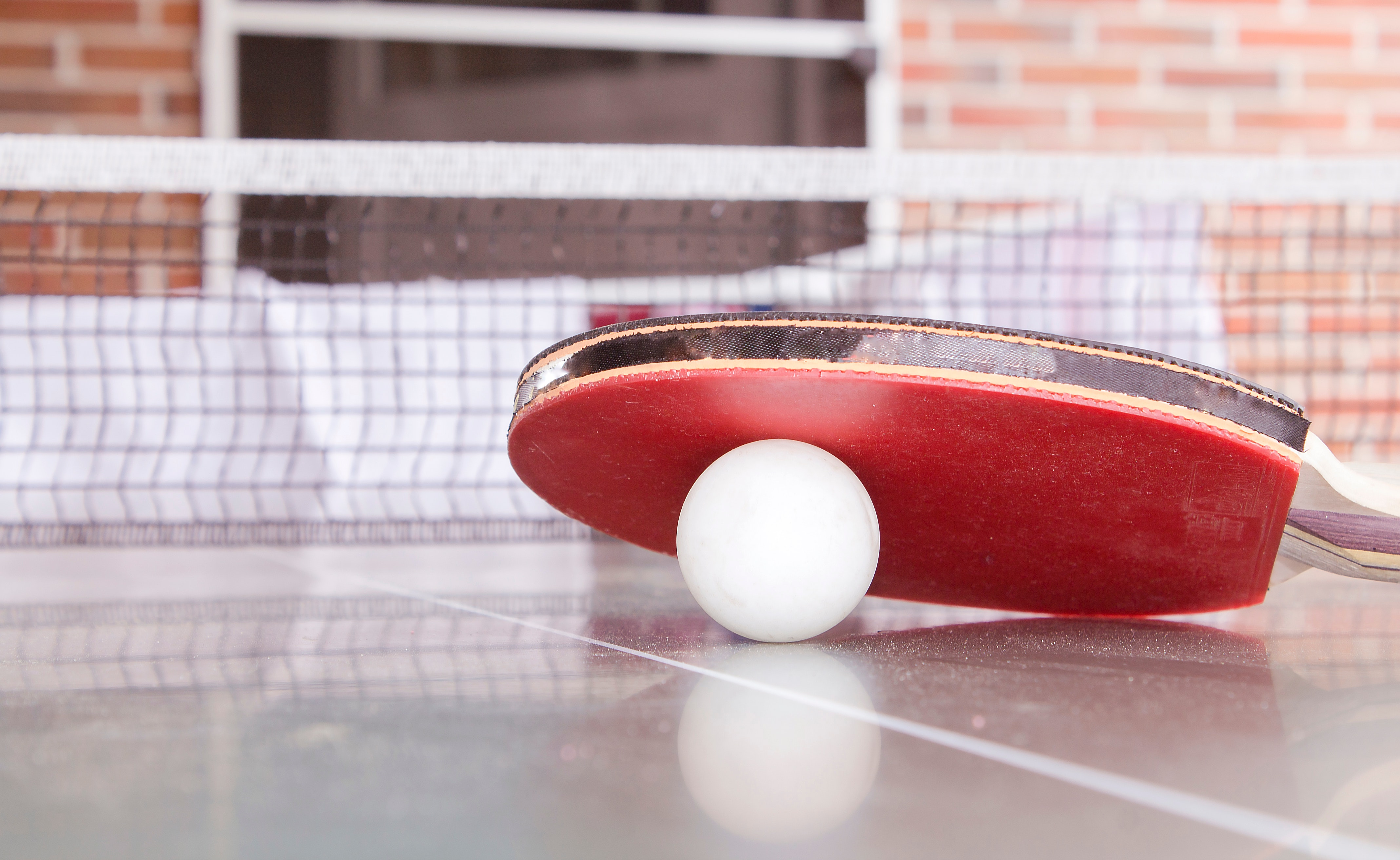 image - tennis de table.jpg