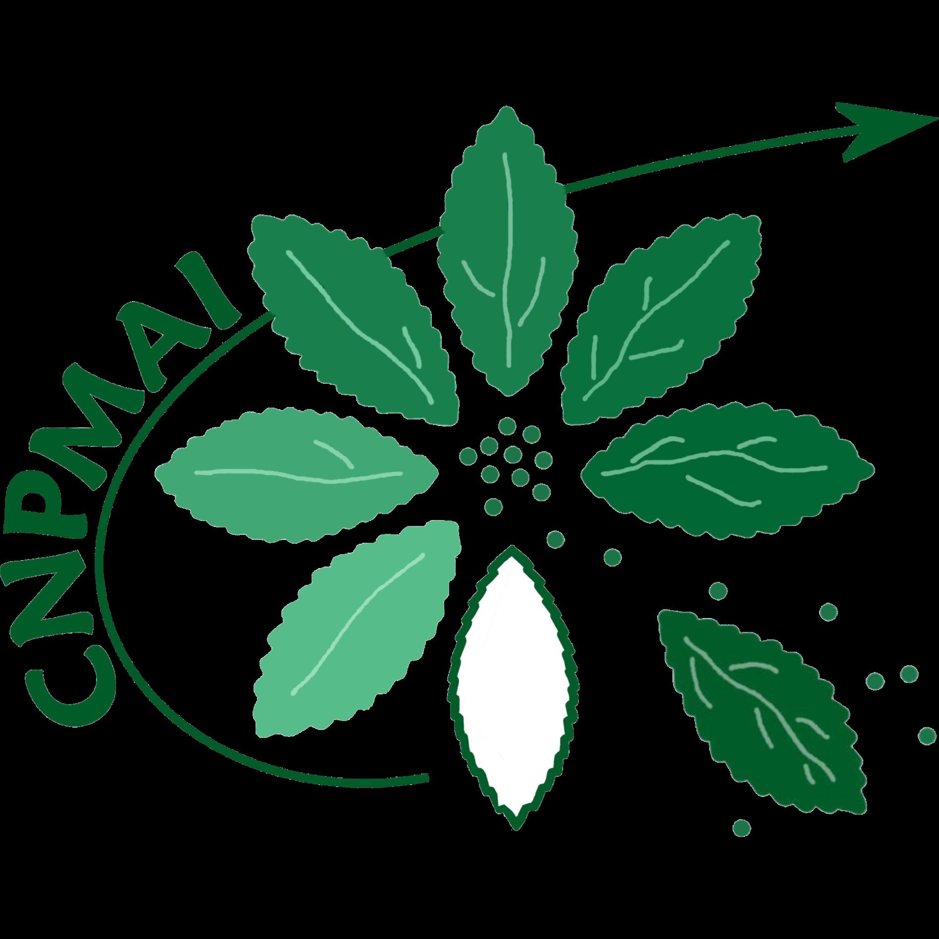 Logo - CNPMAI.png