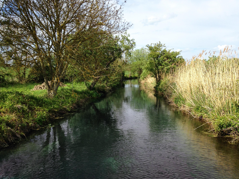 Soisy - La rivière École.jpg