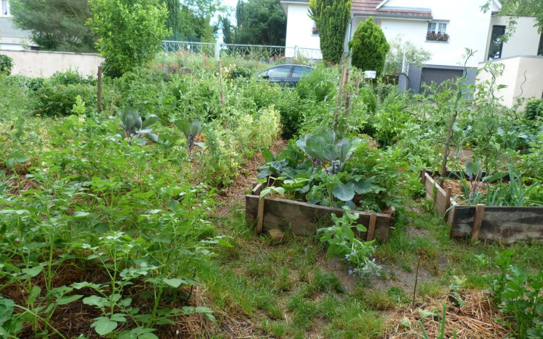 permaculture-F-Robert.jpeg