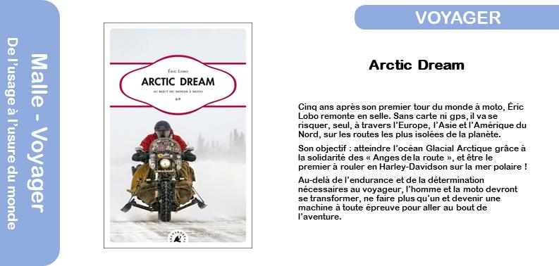 Artic Dream.png