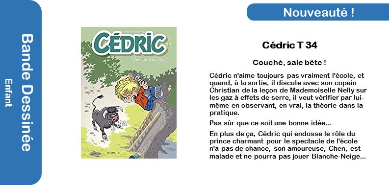 Cédric T34 - Couché sale bête.png