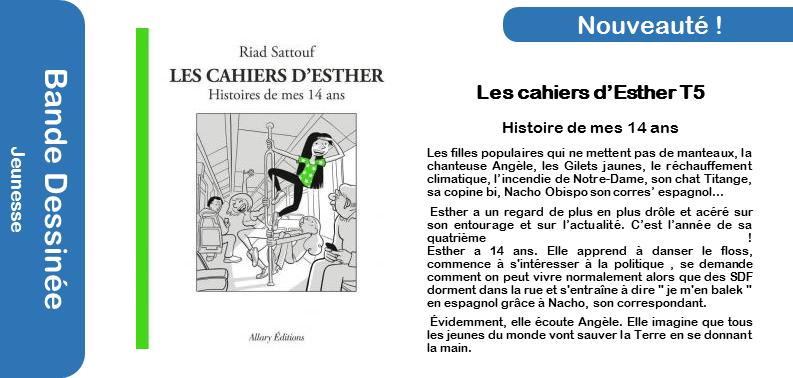 Les Cahiers d_Esther  T5.png