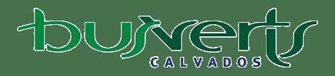 Logo Busverts.png