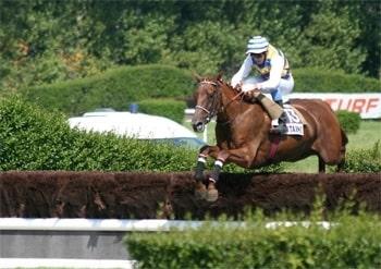 Hippodrome cheval sautant-min.jpg