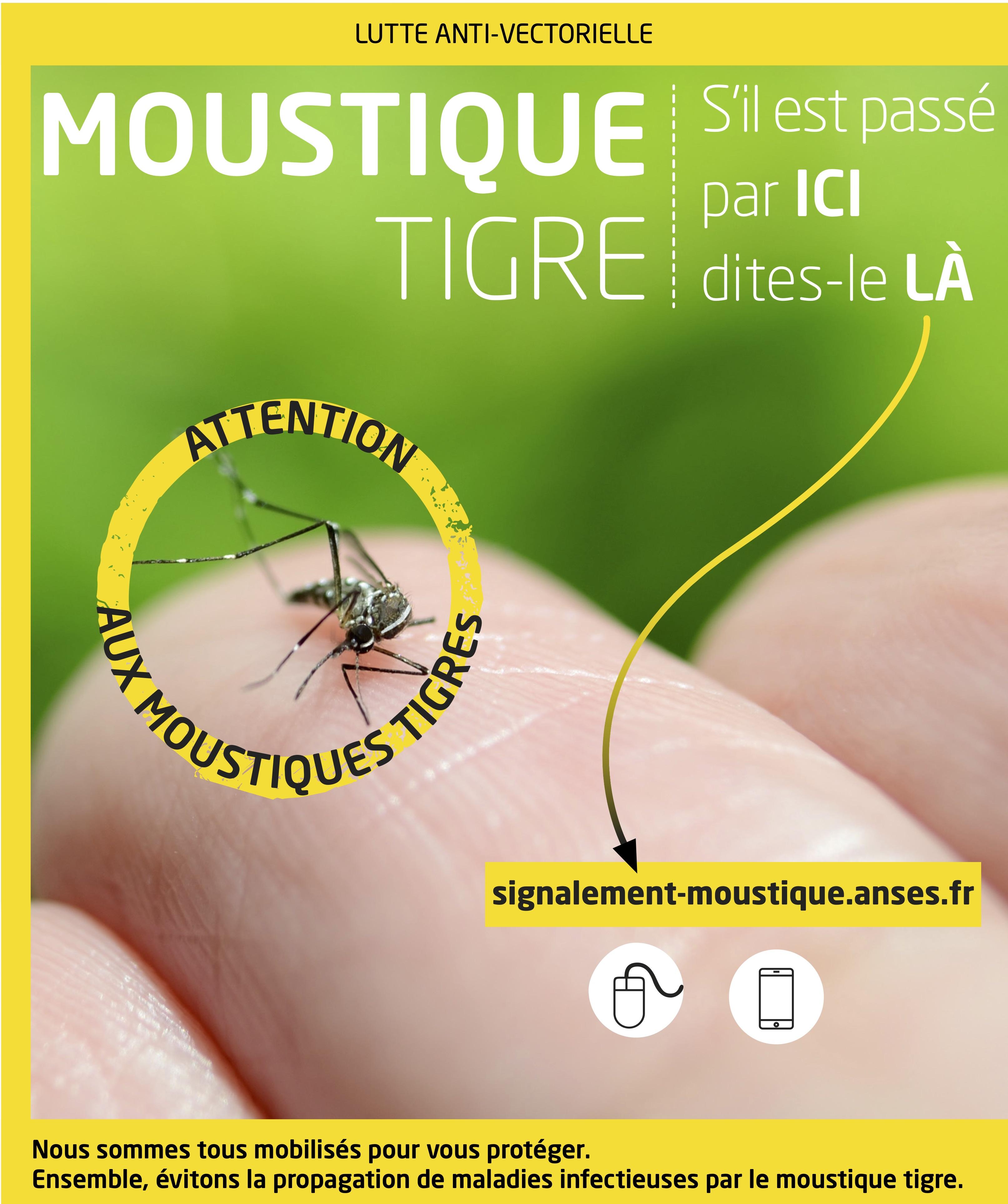 MoustiqueTigre_Signalement_A3.jpg