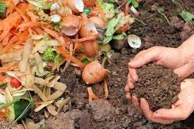 compost.jpg1.jpg