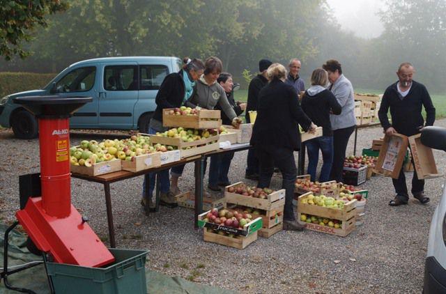 journee pommes au parc.jpg