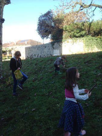 plantation bulbes enfants.jpg