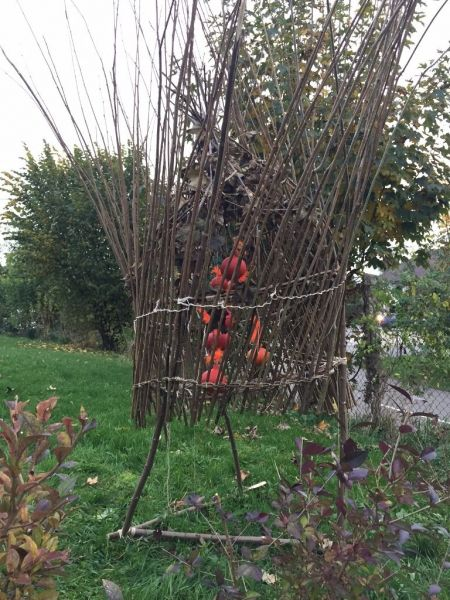 concours courge sculpture.jpg