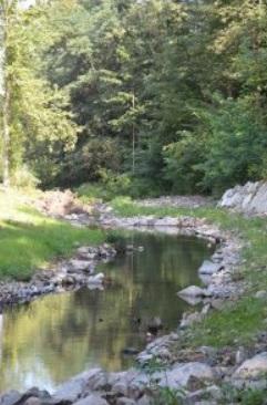 image riviere.jpg