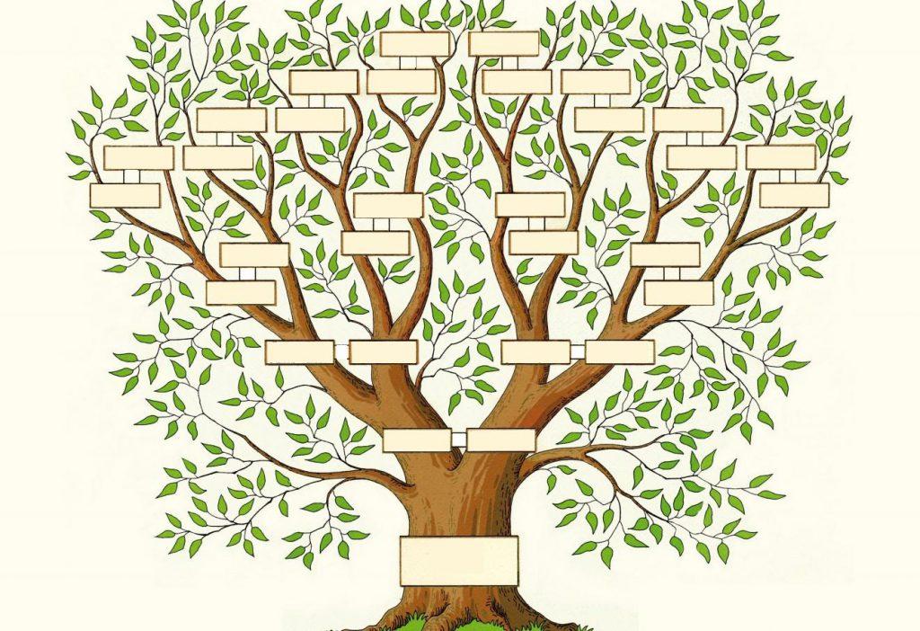 Genealogie_02.jpg