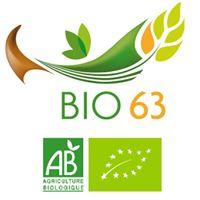 marché bio63.jpg