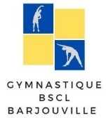 LOGO section gym bscl.jpg