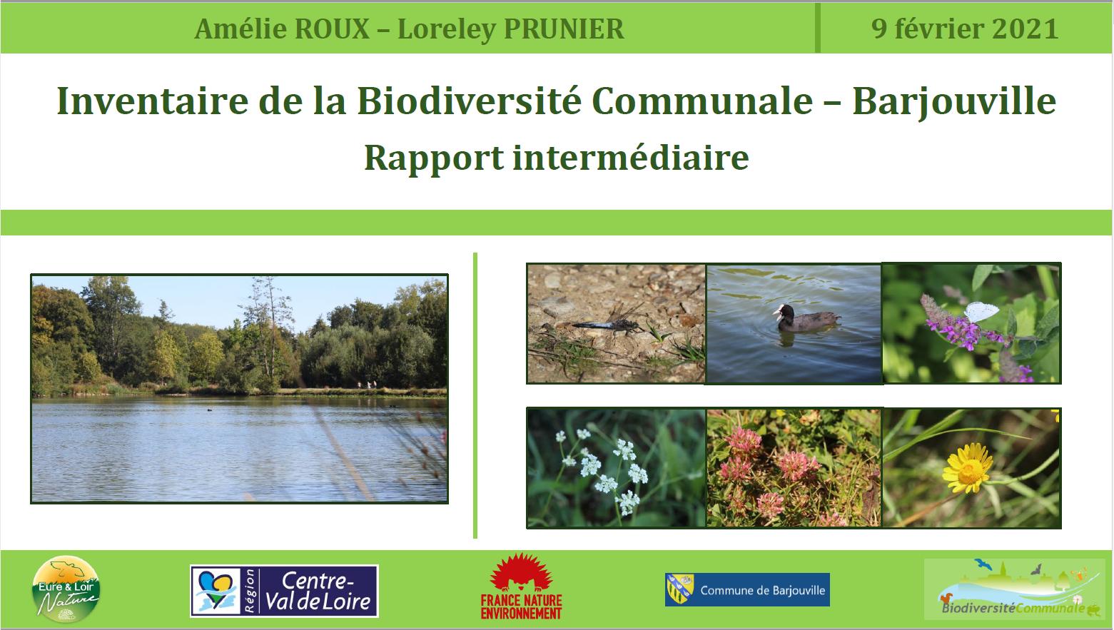 20210401 IBC Rapport.PNG