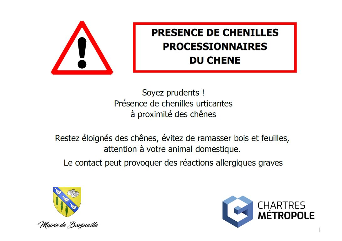 ATTENTION CHENILLES PROCESSIONNAIRS.JPG