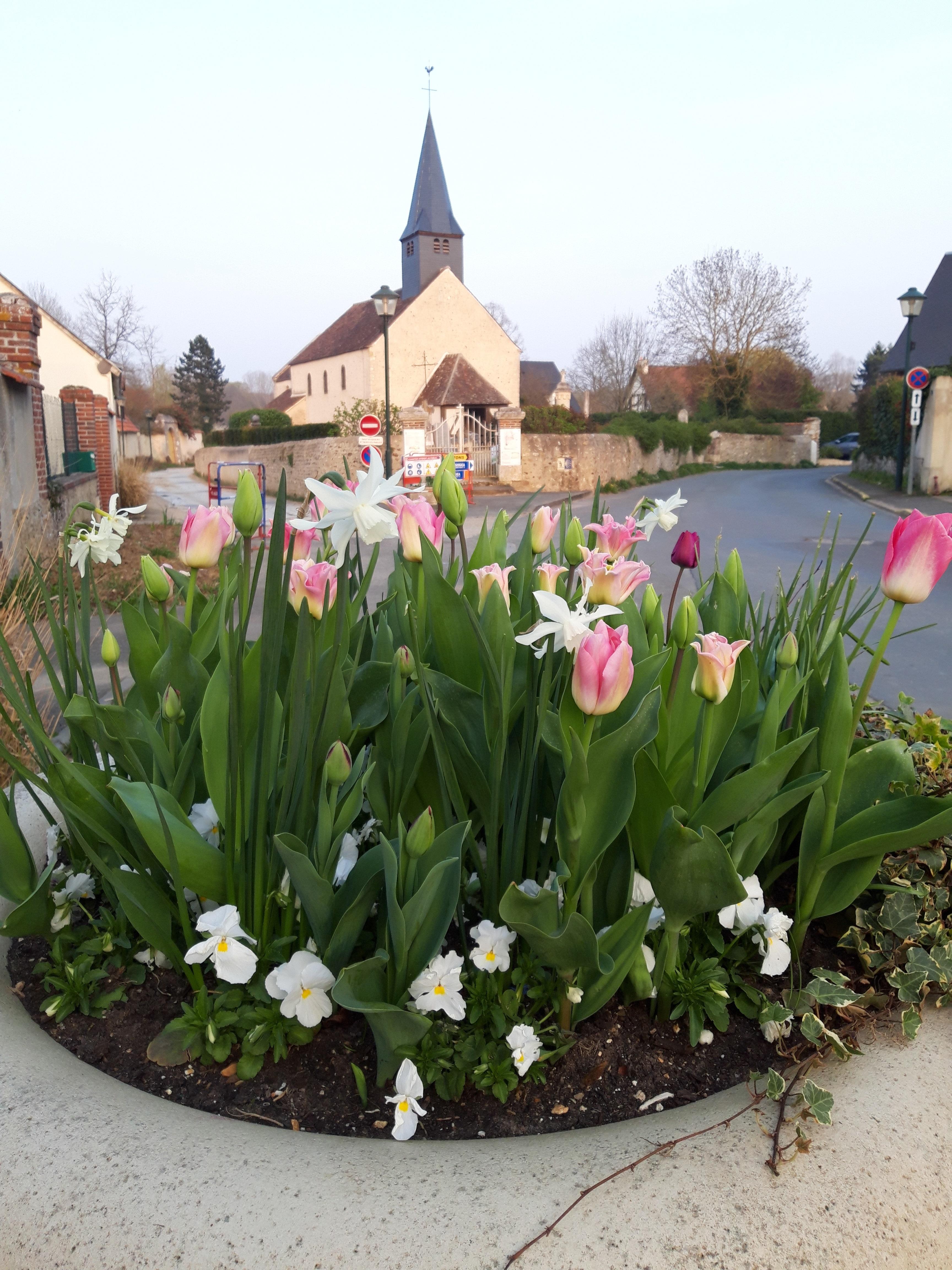 eglise fleurs.jpg