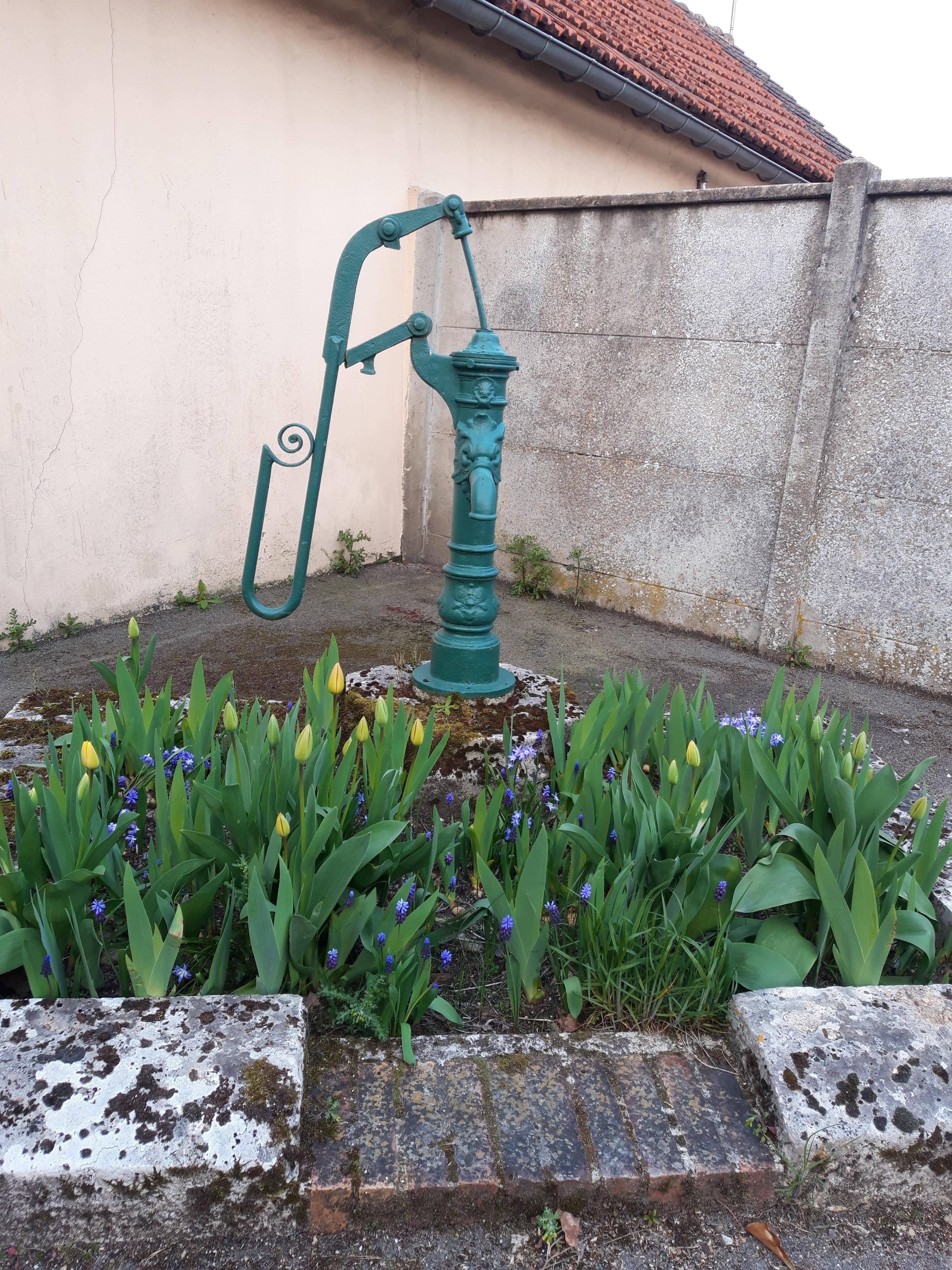 pompe à eau.jpg