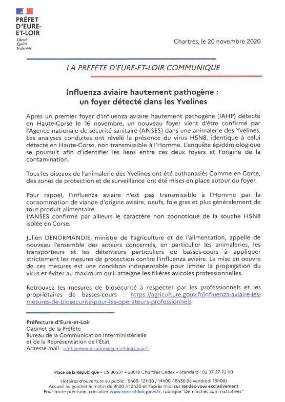 COMMUNIQUE PRESSE PREF GRIPPE AVIAIRE.JPG