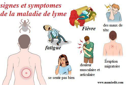 Lyme symptomes.jpg