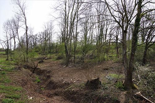 210415- Photo Jardins de Cordelle-W.jpg