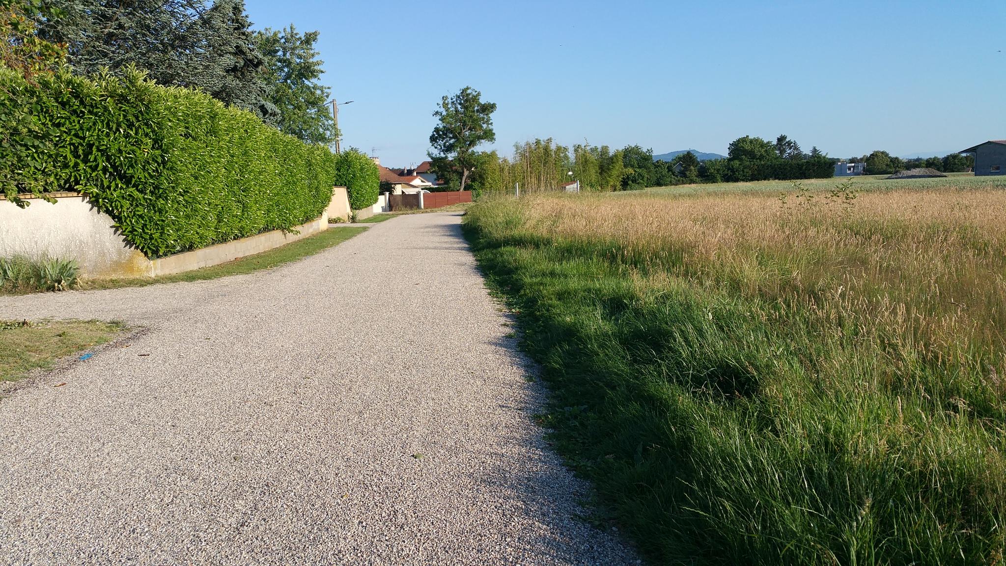 Chemin de la Murette