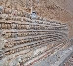 mur arêtes de poissons