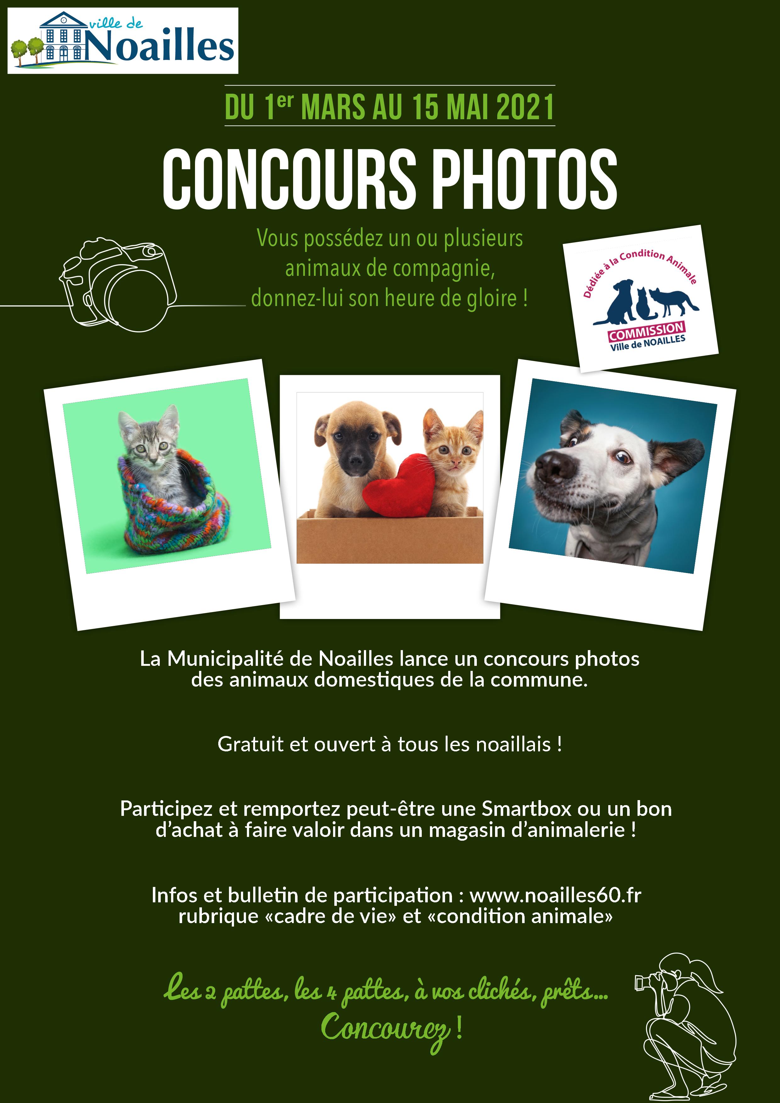 Affiche concours photos - flyers allégés.png