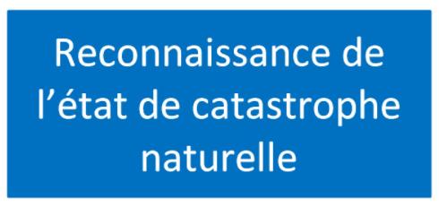 Reconnaissance cata naturelle.PNG
