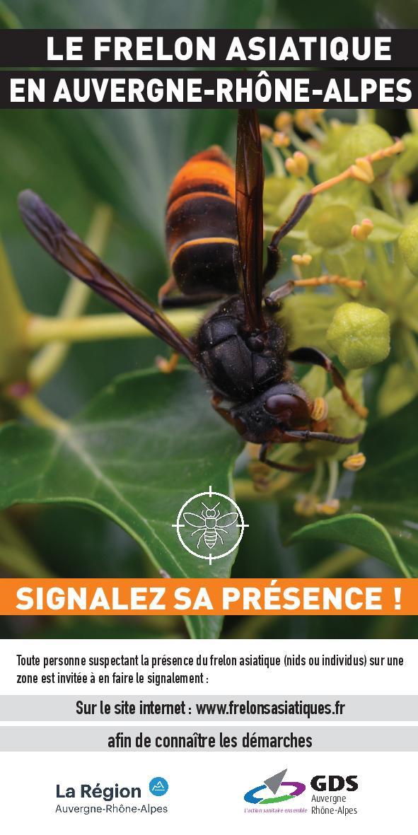 Flyer signalez le Frelon asiatique_2021-page-001.jpg