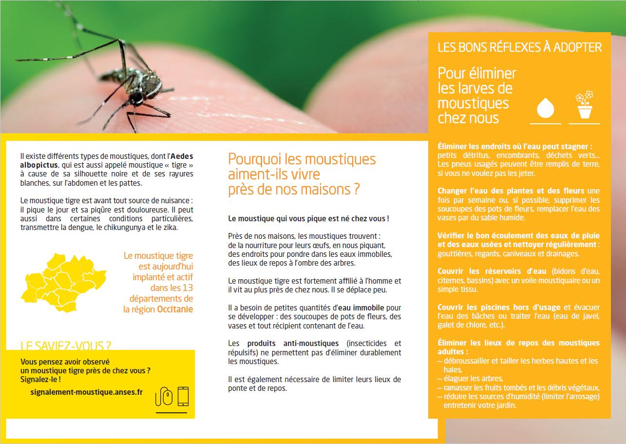affiche moustique 2.png