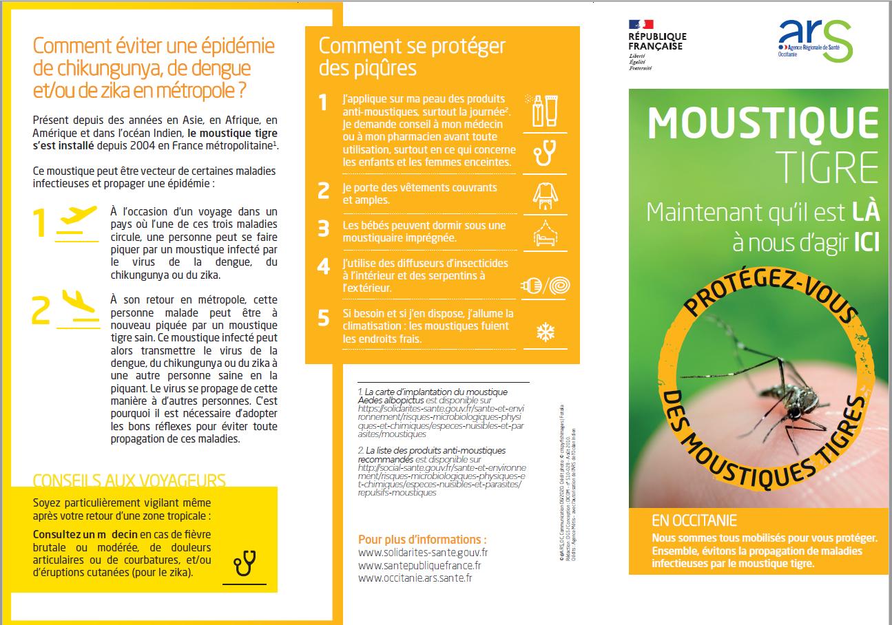 affiche moustique 1.png
