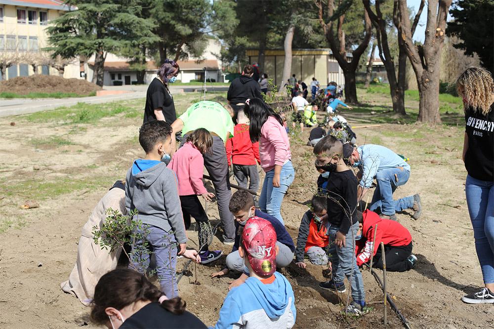 Plantations_arbres_ecole_ancien_college_mars21_WEB_1.jpg